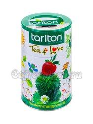 Чай Tarlton Любовь зеленый 100 г ж.б. (с копилкой)